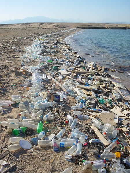 Angespülter Plastikmüll am roten Meer (c) Vberger/Wikipedia